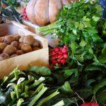 Paniers de légumes de saison
